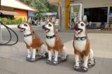 Grrr Petrol Station Guards