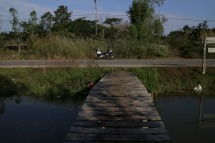 Pond Bridge
