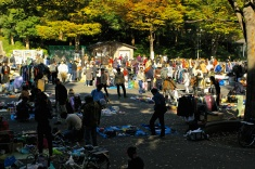 Trading in the park