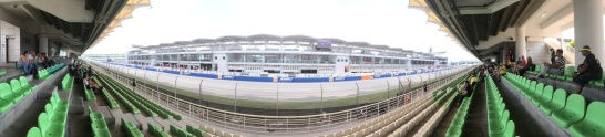 Main grandstand