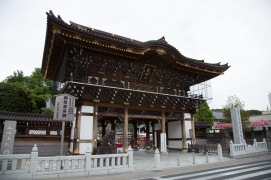 Somon Gate